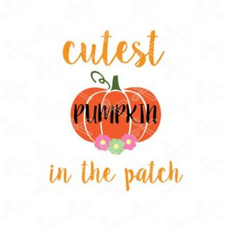 free cutest pumpkin in the patch svg