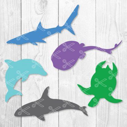 Ocean Life Clipart Sea Animals SVG