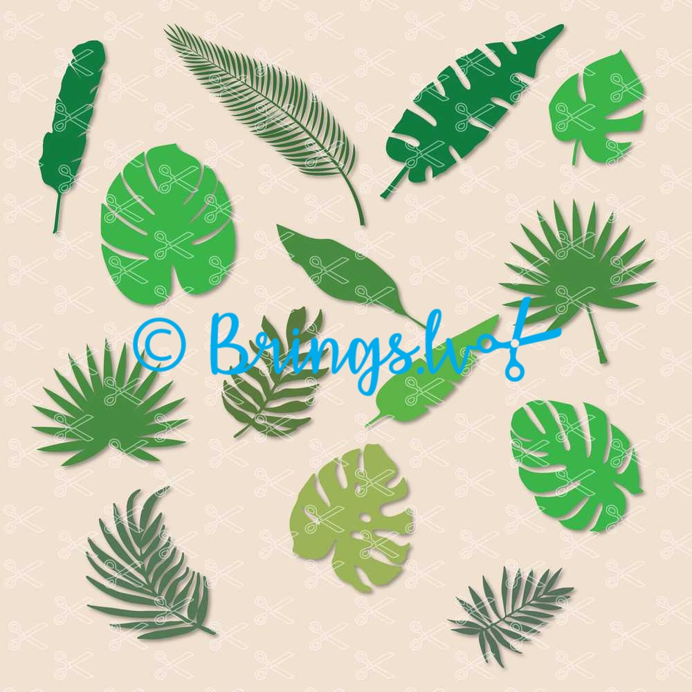 Jungle Tropical Leaves SVG Cut Files