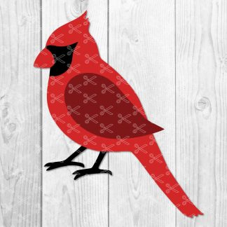 Cardinal Bird SVG