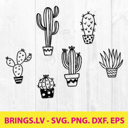 Cactus SVG Bundle