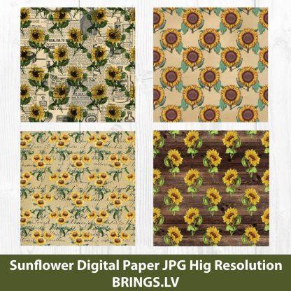 Sunflower Digital Pattern JPG