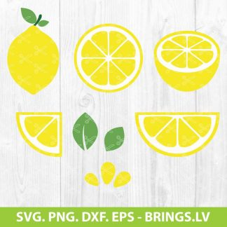 Lemon Slice SVG